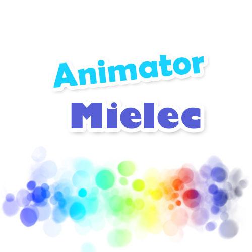 mielec animator-animator czasu wolnego-animator na wesele